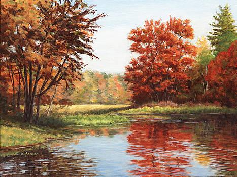 Kendall Pond by Elaine Farmer
