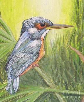 Kingfisher by Debra Piro