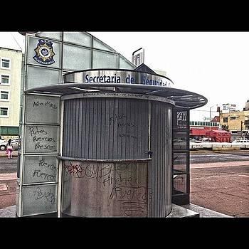 #kiosco #parquerojo #cerdos by Fernando Barroso
