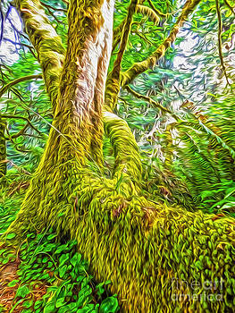 Gregory Dyer - Klamath Moss Tree