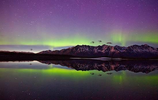 Knik Aurora Reflections by Sam Amato