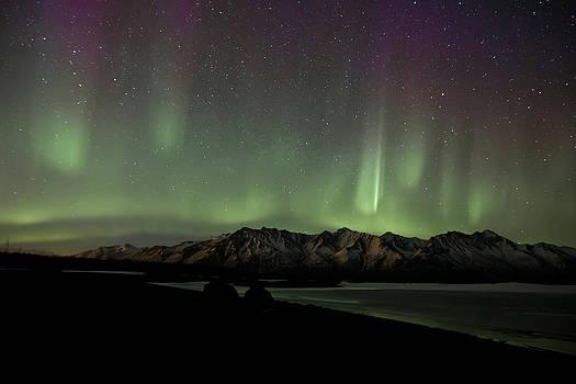 Knik Northern Lights by Sam Amato