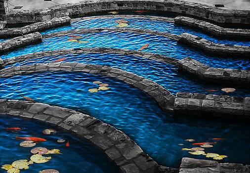 Koi Blue by Kelly Rader