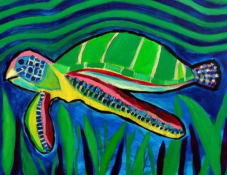 La Tortuga by Ted Hebbler