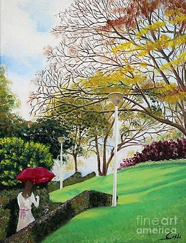 Lady in Red Umbrella - 1 by Seth Corda