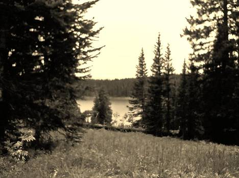 Lake by Anne Back