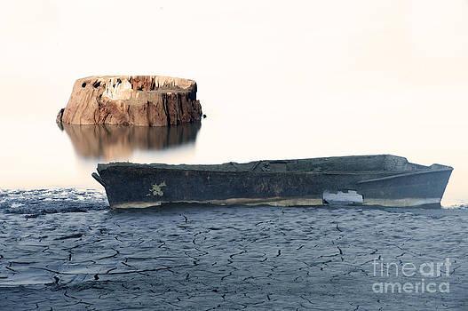 Lake Bottom Boat by Ron Hoggard