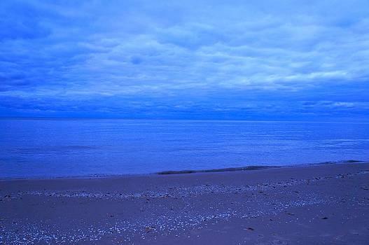 Lake Michigan by Kristine Bogdanovich