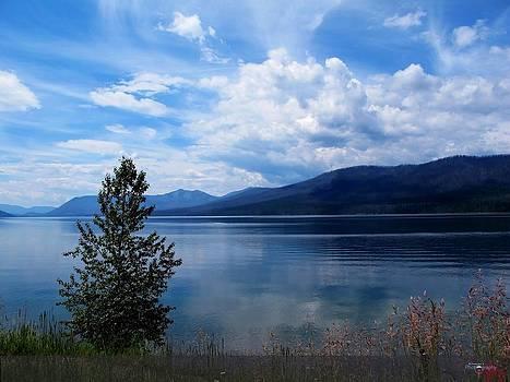 Lake side idyll by Nilanjan Chaks