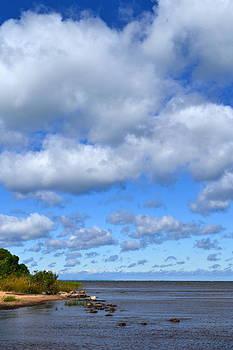 Michelle Calkins - Lake Superior at Whitefish Bay