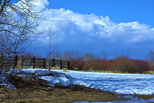 Landscape  Snow scene by Johanna Bruwer