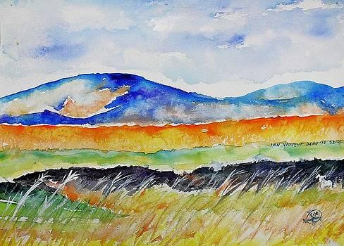 Ion vincent DAnu - Landscape study