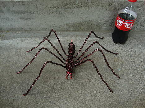 Large Wire Spider Next To 20oz Soda by Scott Faucett