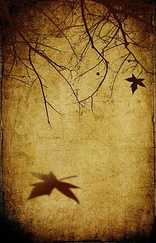 Svetlana Sewell - Last Breath of Autumn