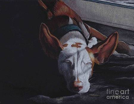 Late Afternoon Nap by Charlotte Yealey