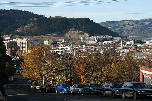 Terry Perham - Late Autumn View To North Dunedin