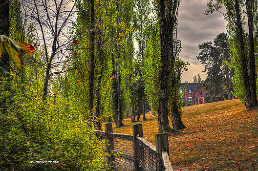 Le Chateau A fall day in the NW by Sarai Rachel