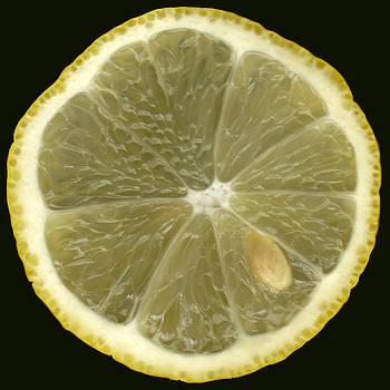 Lemon by Phachesnie Studio