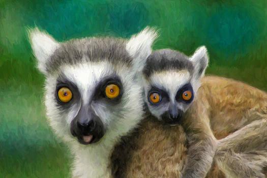Dominic Piperata - Lemurs