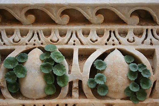 Leptis Magna, Libya by Joe & Clair Carnegie / Libyan Soup