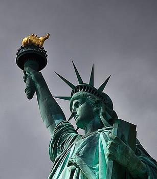 Liberty by Patrick  Flynn