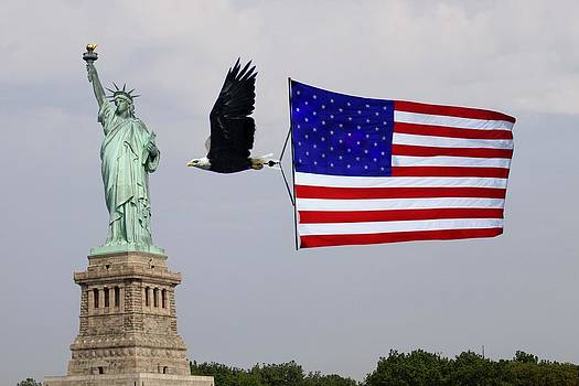 Liberty Strength and Freedom by L Granville Laird