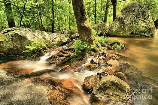 Adam Jewell - Life On The Rocks