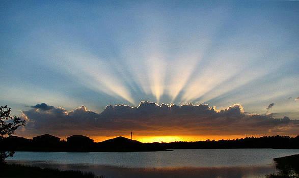 Light Streams by Bill Lucas