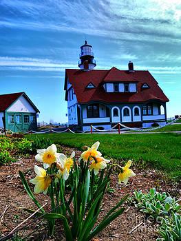 Lighthouse Flowers by Nancie DeMellia