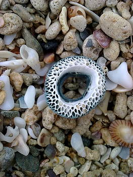 Limpet Mandala by Jeannine Davidoff