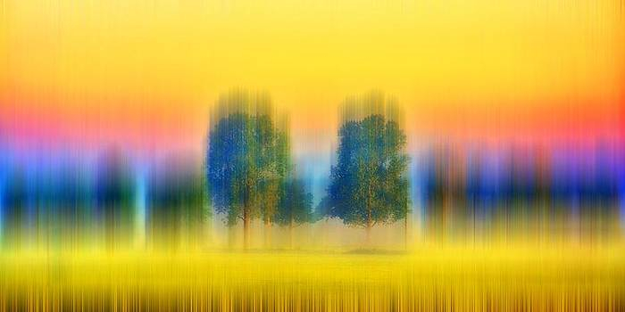 Thomas Christoph - line of trees
