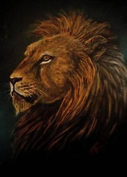 Lion King by Jennifer Jeffris