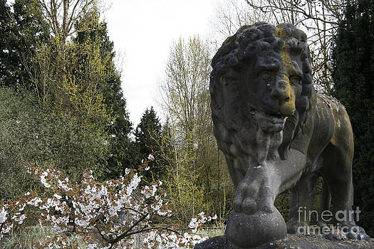 Lion Sculpture by Heather Lennox