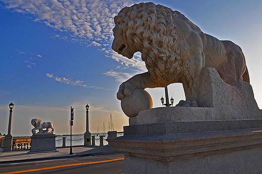 Lions Gate Bridge by Peter  McIntosh