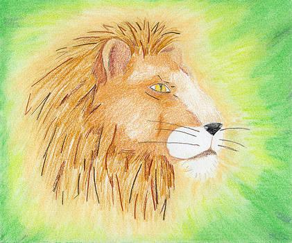 Lions Head by Mark Schutter