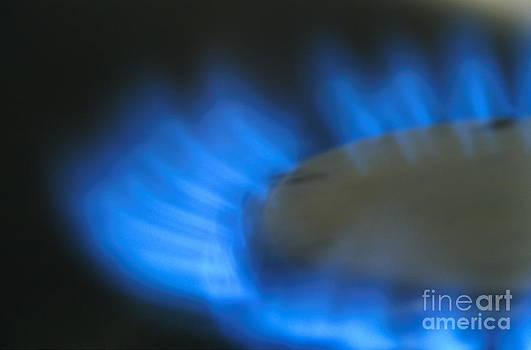 Sami Sarkis - Lit blue gas ring
