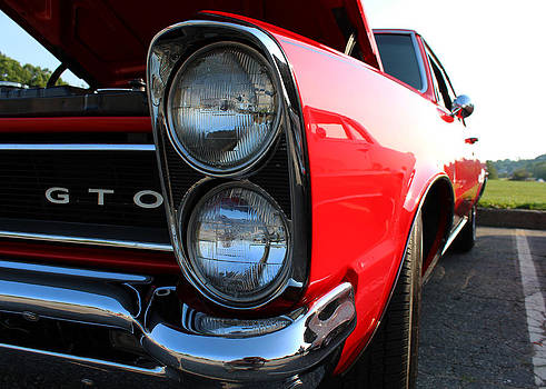 Little GTO by Shaileen Landsberg
