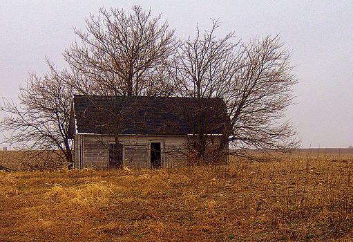 Little House by Claude Oesterreicher