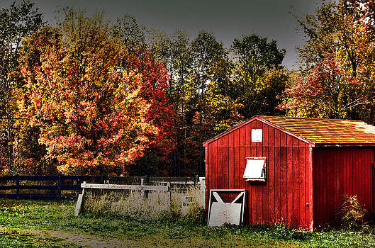 Little Red Shed by Joshua Towne