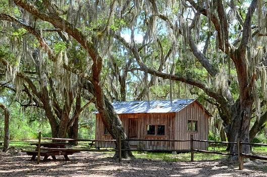Live Oak Cabin by Bob Jackson