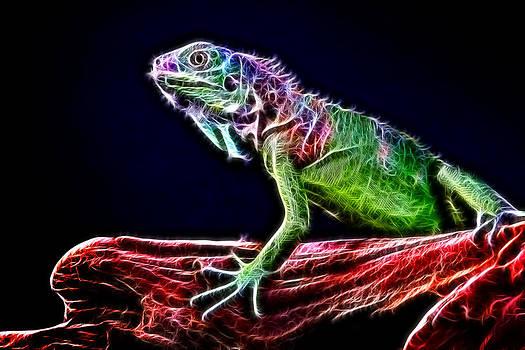 Lizart's colours by Ratan Sonal