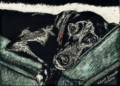 Lizzie the Dog by Robert Goudreau