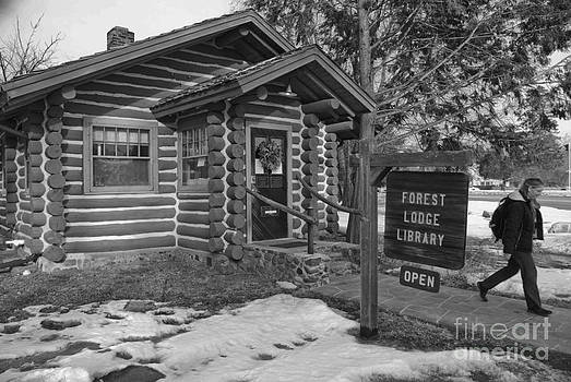 Log cabin library 11 by Jim Wright