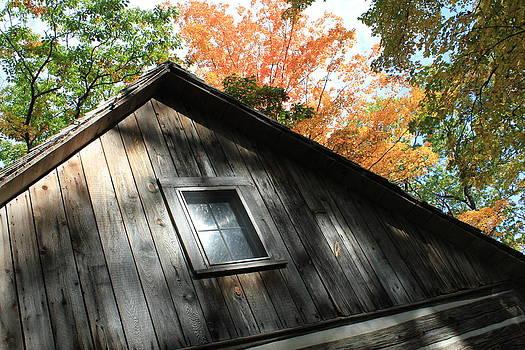 Log Cabin by Sheryl Burns