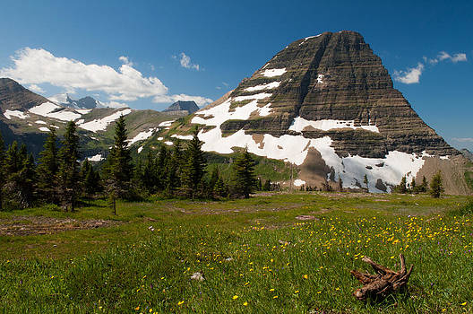 Logan Pass in Glacier National Park by Bruce Gourley