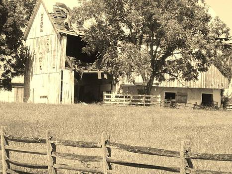 Lonely Barn by Trish Pitts
