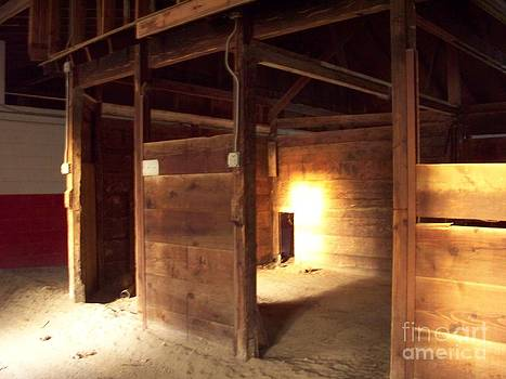 Greg Geraci - Lonely Horse Stall