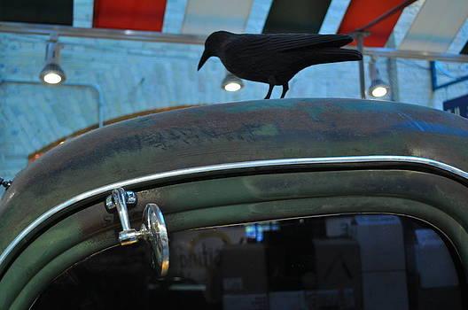 Daryl Macinthre - Lonesome Crow on 1940 Pickup