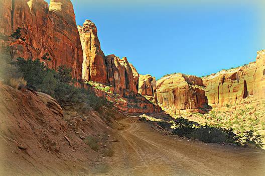 Marty Koch - Long Canyon 1