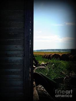 Looking Past the old Home by Ashley Vipond